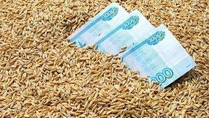 Нижегородская область наращивает экспорт сельхозпродукции
