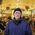 На  территории Свободного порта Владивосток открылась новая  животноводческая ферма