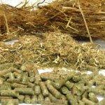 В Томской области ввели в эксплуатацию ферму по переработке отходов животноводства