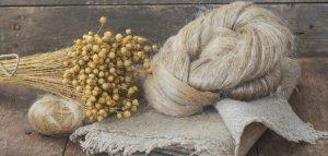 В Удмуртии займутся глубокой переработкой своего льна