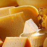 В Краснодарском крае планируют ввести в эксплуатацию крупнейший в Европе сыроваренный завод