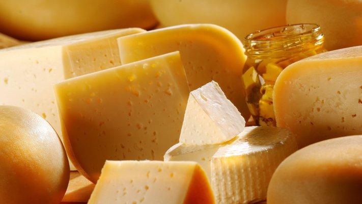 В Краснодарском крае вскоре начнет действовать самый большой в Европе сыроваренный завод