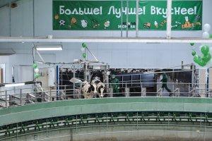 """""""ЭкоНива"""" запустила в работу крупный животноовдческий комплекс в Рязанской области"""