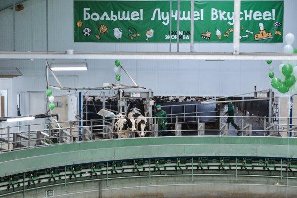 Холдинг «ЭкоНива» открыл в Рязанской области крупный животноводческий комплекс