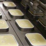 В Пензенской области завершается модернизация сыроваренного завода Hochland