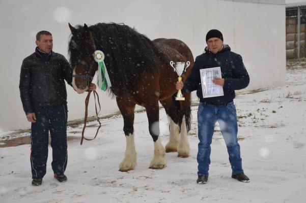 """Владимирских тяжеловозов впервые покажут на выставке """"Агрофарм 2002"""""""