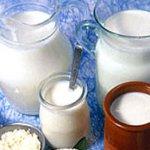 В начале 2021 года в Ингушетии откроется новый молокозавод