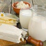 В Новосибирской области в этом году начнет работать первая очередь сыроваренного завода