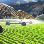 Татарстан расширяет территорию поливных земель