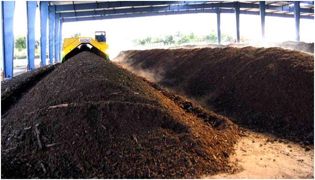 В Тамбовской области разработали технологию утилизации биологических отходов сельхозпроизводства