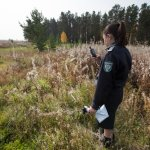 Житель Москвы заплатит двойной штраф за неухоженный земельный участок  в Смоленской области