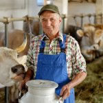 Фермеры Курганской области увеличивают производство молока и мяса