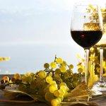 В Ростовской области начато производство безалкогольного виноградного вина