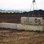 Молочная ферма «Азнакай» заполнится дойным стадом  собственной селекции холдинга «Агросила»