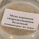 Воронежские ученые предлагают производить комбикормовую добавку из пера птиц