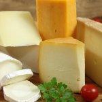 В Ярославской области холдинг «АгриВолга» намерен создать новое пищевое производство