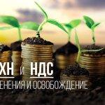 Правительство ЕАО вдвое снизило ставку налога для сельхозпроизводителей