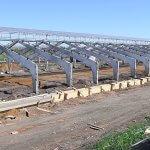 Крупнейшая животноводческая ферма России возводится в Мордовии