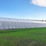 В Башкирии создается растениеводческий кластер