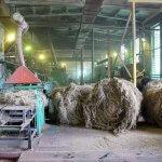 В Тверской области планируют создать модель кластера по производству льноволокна