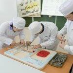 В Якутии компенсируют затраты сельхозпроизводителей  по  подготовке квалифицированных специалистов