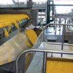 В Орловской области появится три новых завода по переработке сельскохозяйственной продукции