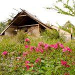 Собственников земли во Владимирской области оштрафовали за неиспользование участков по назначению
