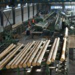 ТОР «Белогорск» в Амурской области пополнится еще одним резидентом