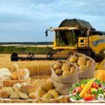 В правительстве планируют изменить закон «О крестьянском (фермерском) хозяйстве»