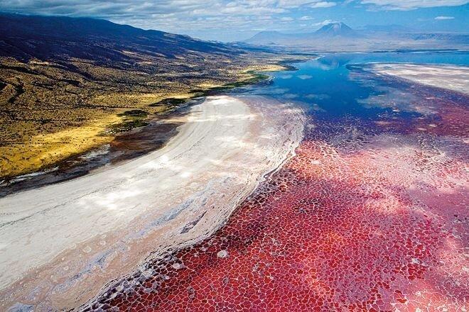 Минеральное озеро, окрашенное галофилами
